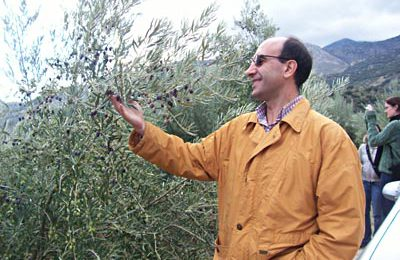 Gabriel is more interested in the olives that look quite ripe.